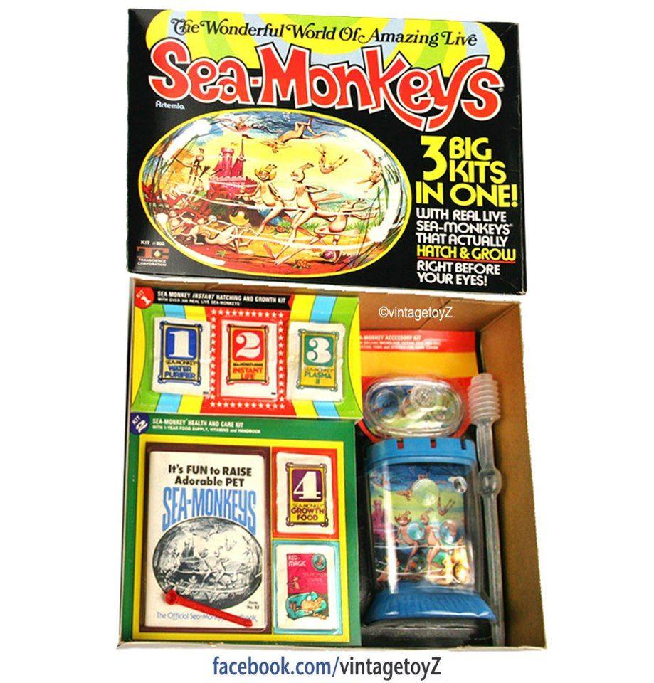 Sea Monkeys Vintage Toys 1970s My Childhood Memories Childhood
