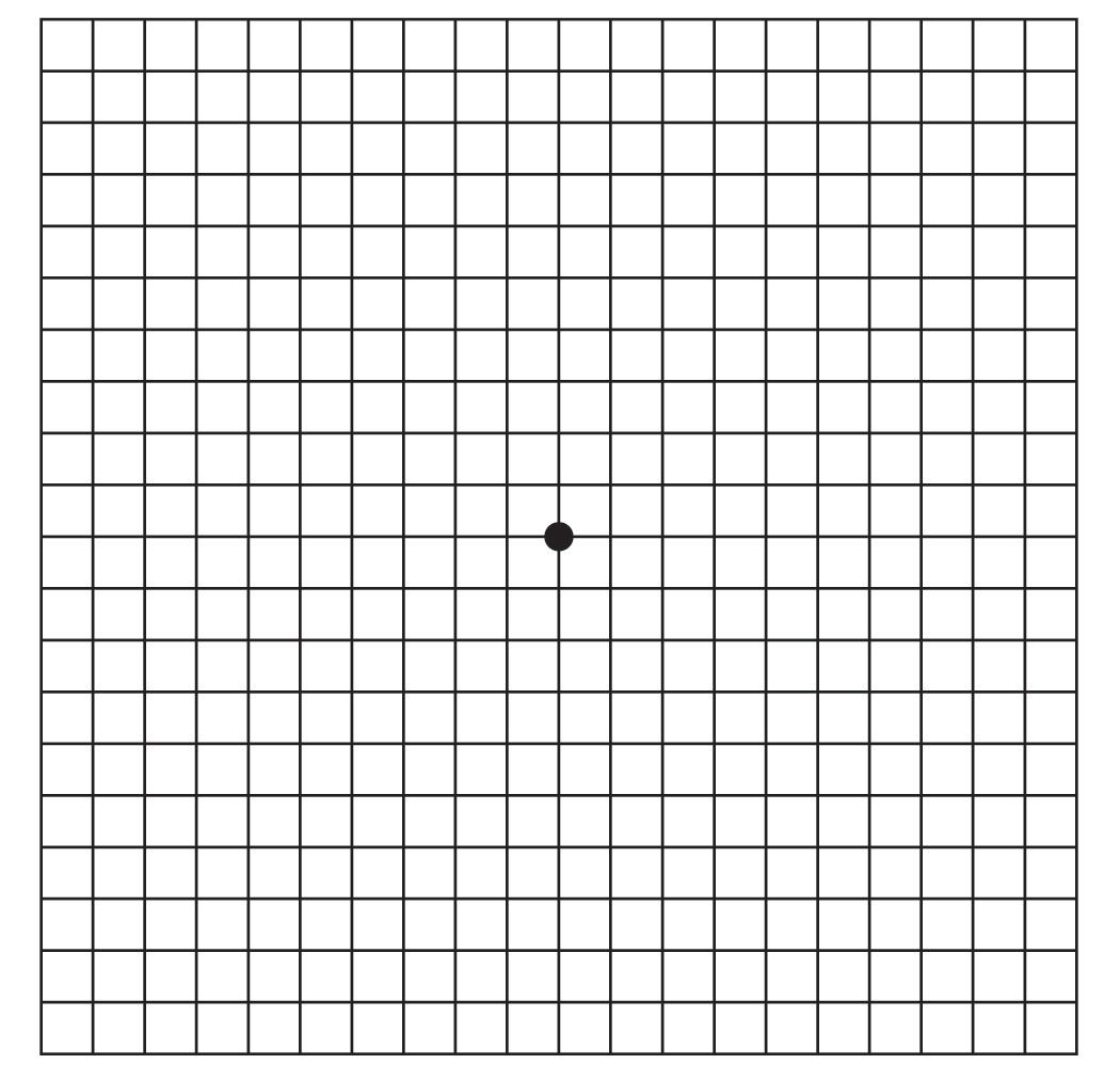 Amsler Grid This Is How To Discovered I Had A Serious Problem With