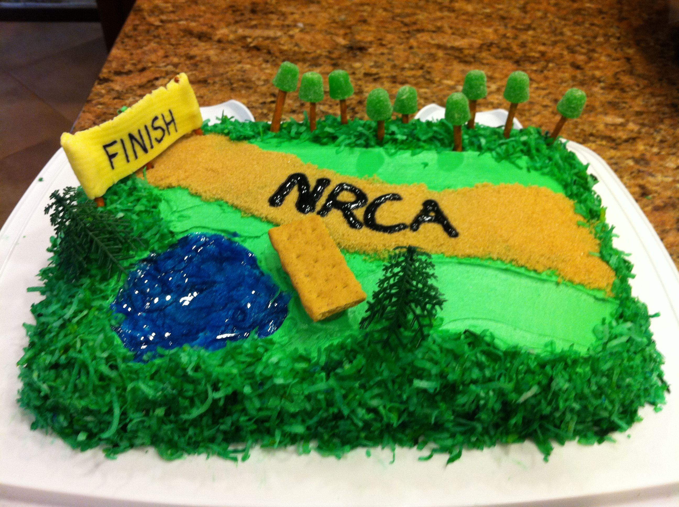Cross Country Cake I Used Blue Decorating Gel Tinted Coconut