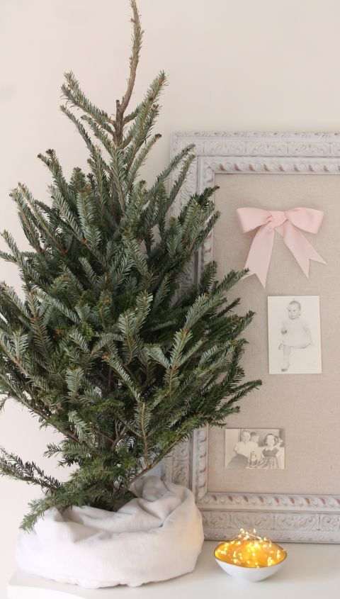 Tip Use A Kids Blanket To Create A Small Tree Skirt Christmas Decorations Christmas Tree Care Christmas Tree Decorations