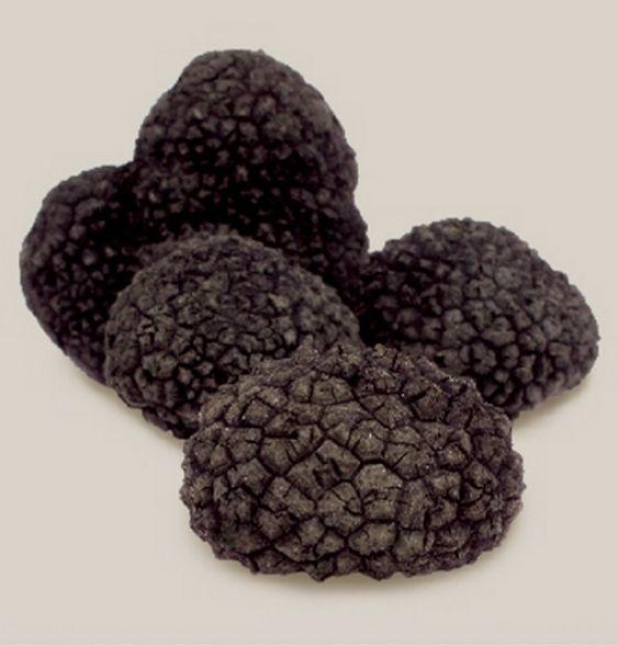 how to grow black truffles