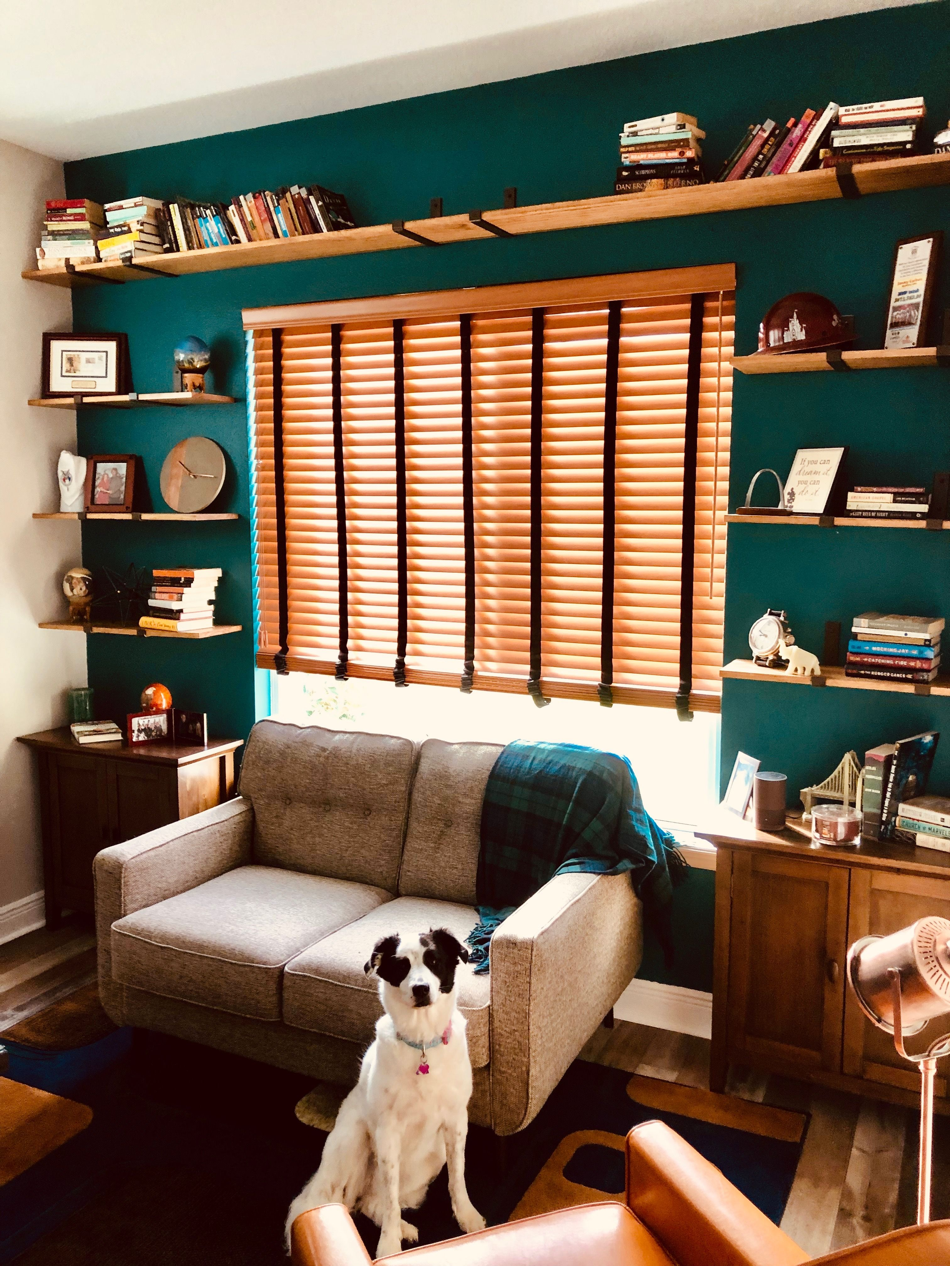 diy shelving for my office w accent wall color multi tone on office accent wall color id=85865
