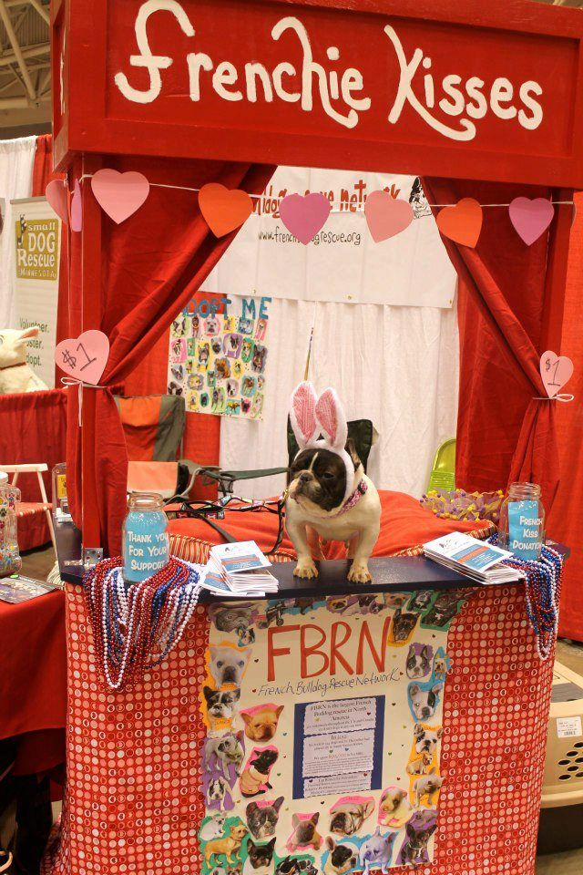 Fbrn Volunteer Olive At The Twin Cities Pet Expo In Minneapolis Mn City Pets French Bulldog Rescue Network Baby Puppies
