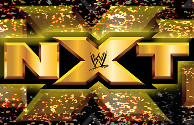 Nxt Logo Wwe Nxt Divas Nxt Divas Wwe