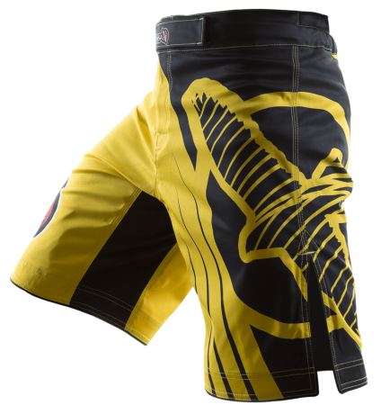 Hayabusa Mma Shorts Replica Suppliers South Africa Mma Fight Shorts Fight Shorts Mma Shorts