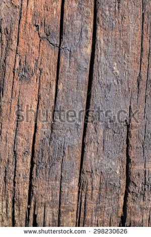 Railway Sleepers Stock Photos, Images, & Pictures