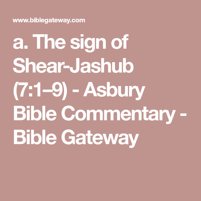 Bible gateway commentary