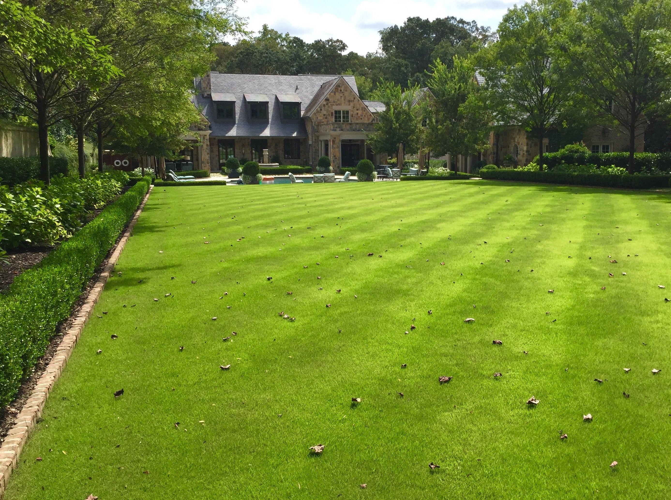 Our Client S Warm Season Turf Grass Is Beginning To Fully Green Up