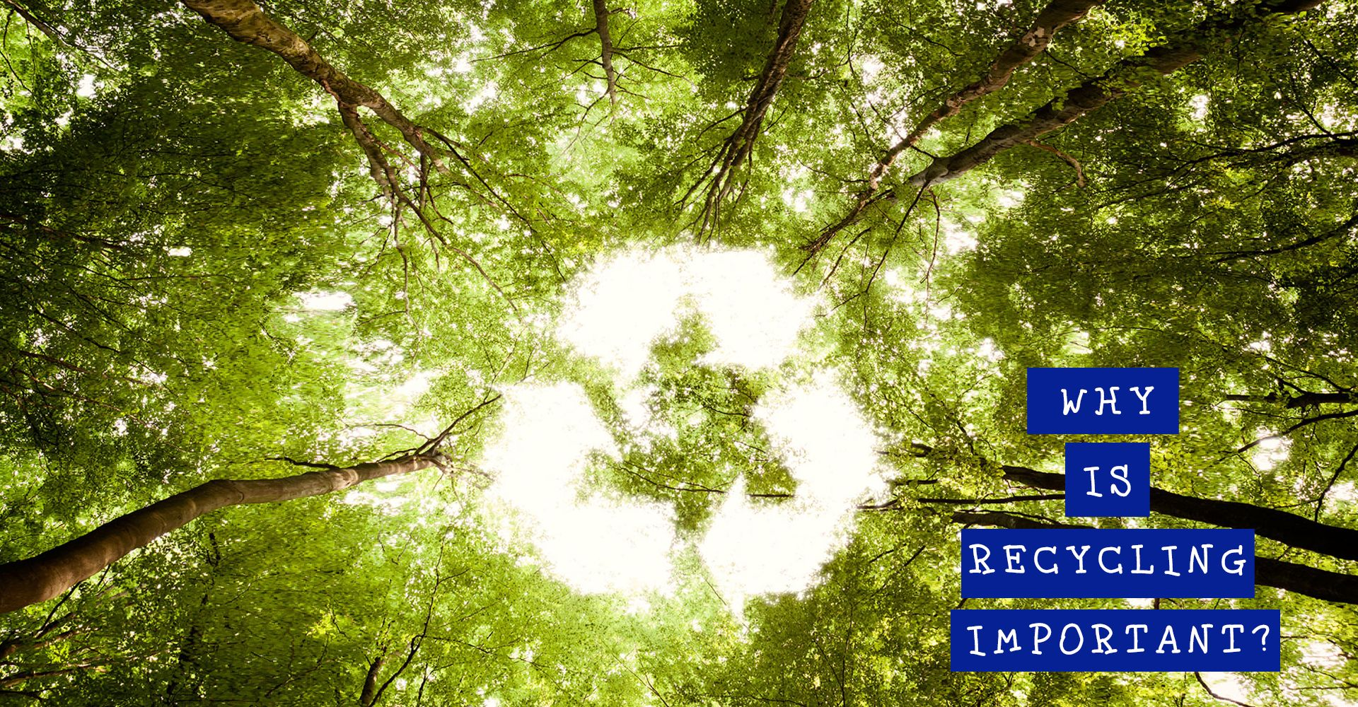 If You Are Wondering Why Is Recycling Important Ask Yourself