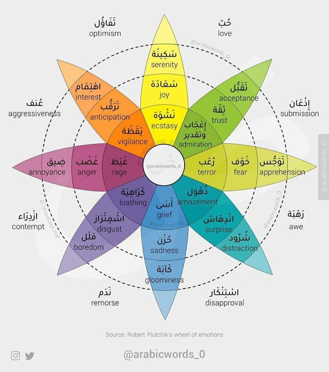 عجلة المشاعر العواطف Wheel Of Emotions Emotions Wheel English Verbs Learning Arabic