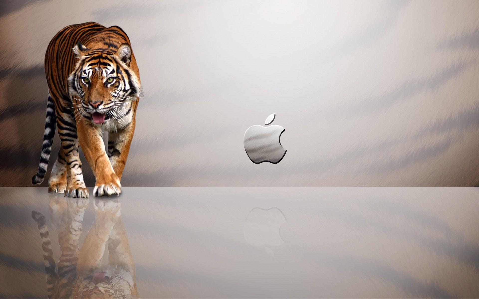 download best wallpaper apple mac tiger for your desktop background