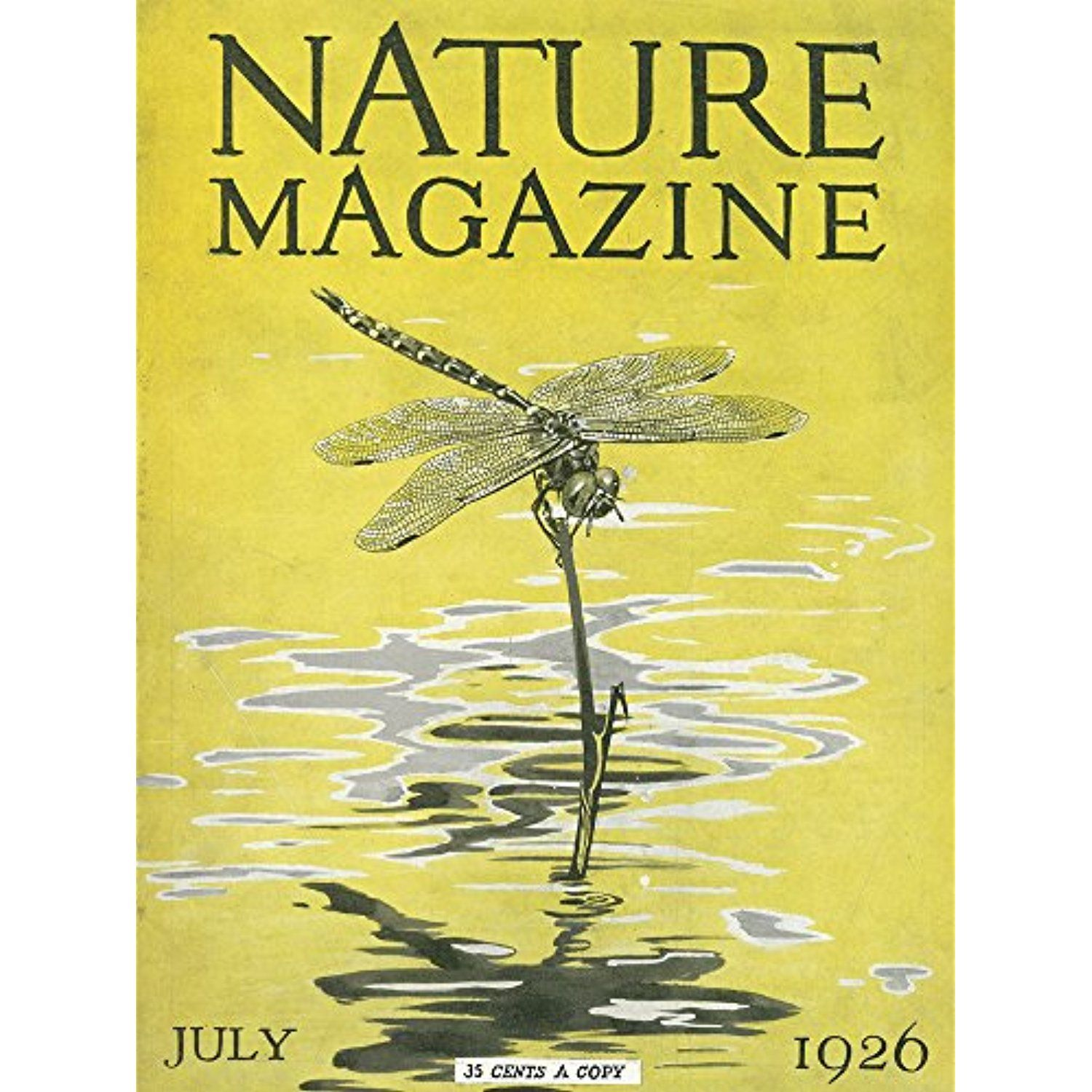 Nature Magazine - View of a Dragonfly over a Pond (12x18 SIGNED ...