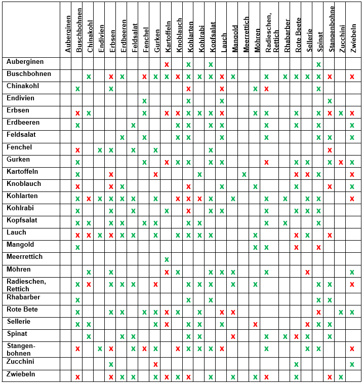 Hochbeet: Fruchtfolge & schädlingsvertreibende Pflanzen #howtogrowvegetables
