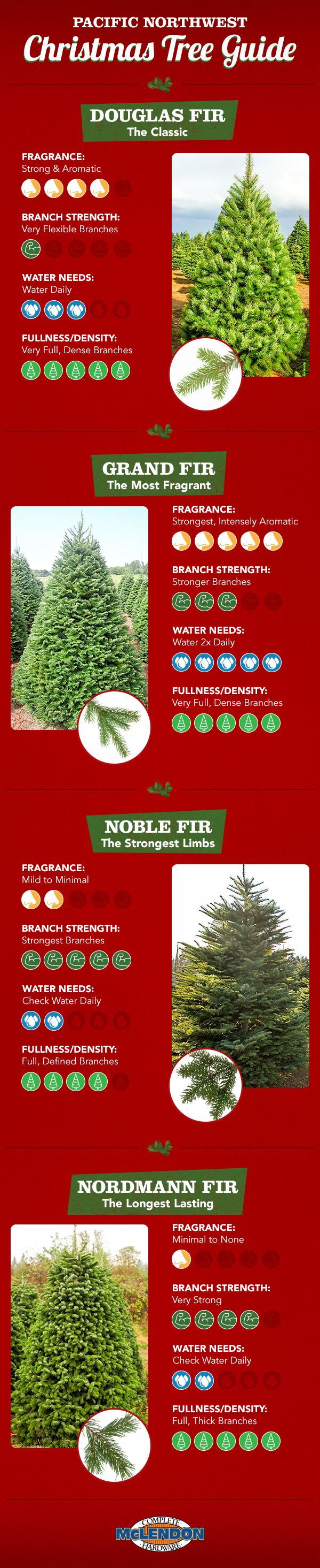 Christmas Tree Guide Christmas Tree Guide Christmas Tree Christmas