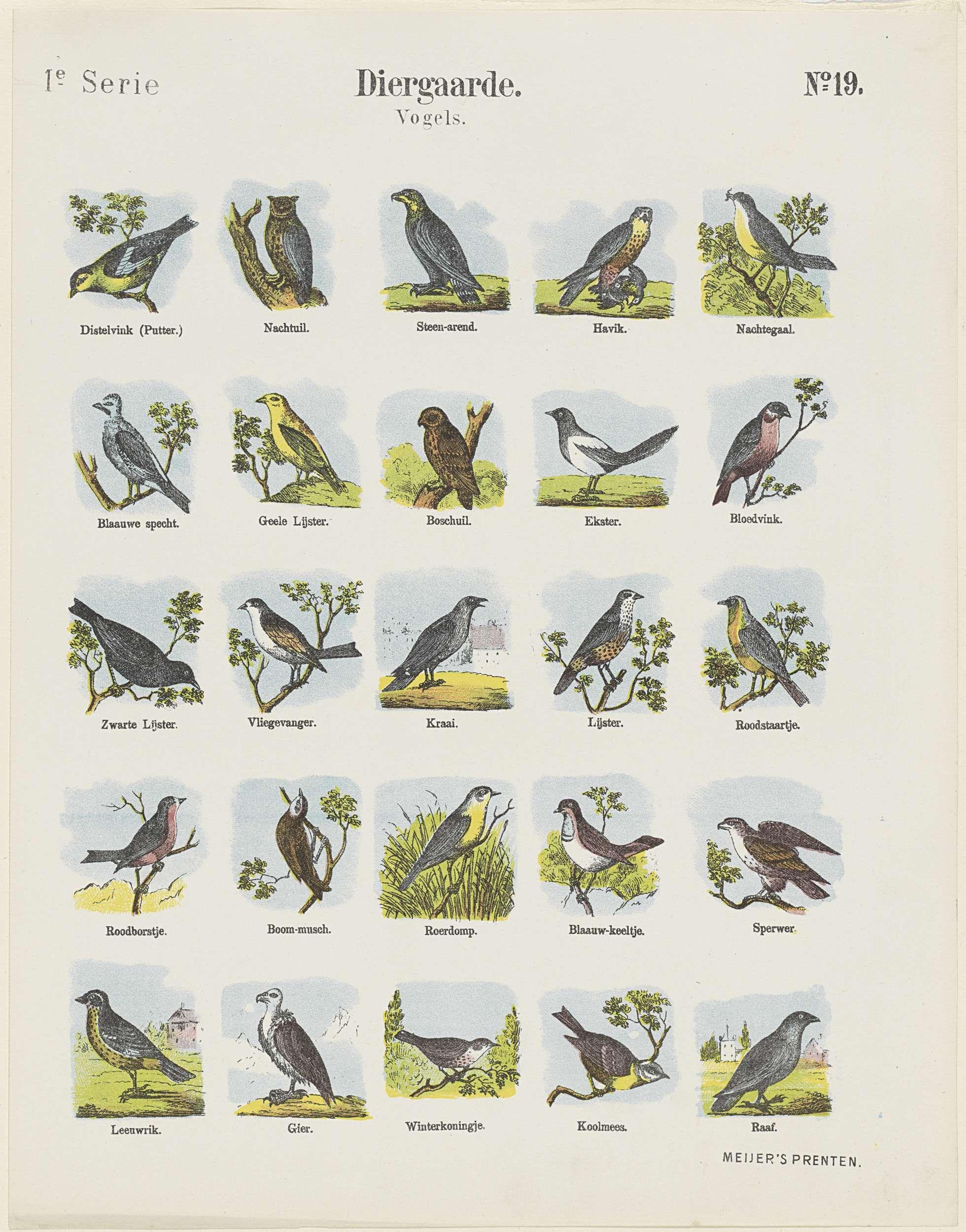 Diergaarde / vogels, De Ruyter