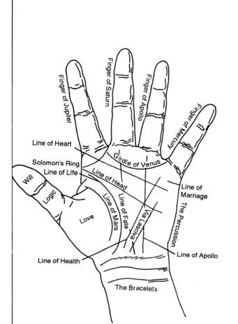 Palmistry Diagram Marriage Line Car Equalizer Palm Reading Wiring All Data Of Hand Skin And Misc Chart Significance