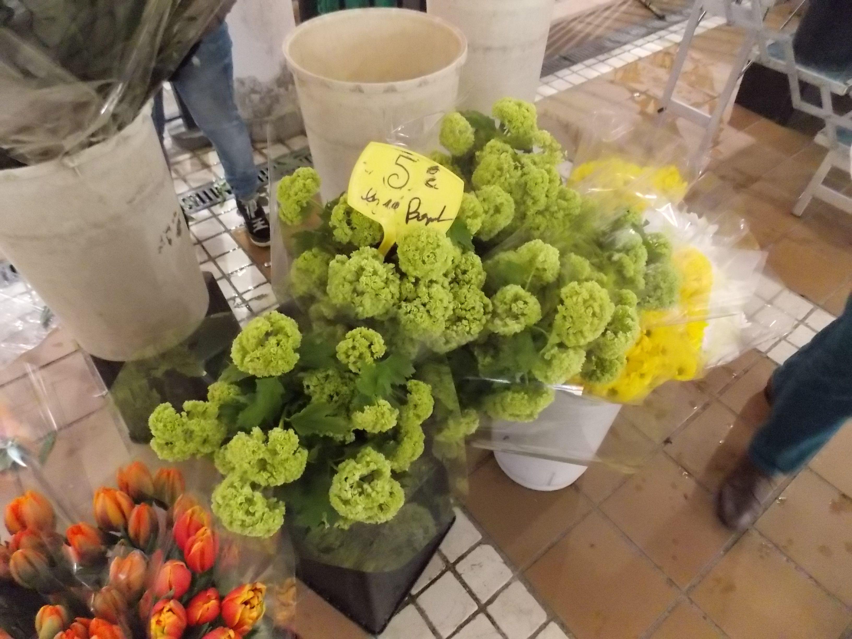 Mercado de Flores Marsella