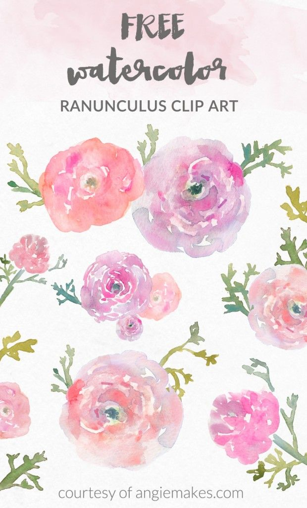 d082ca16e882b Free Watercolor Flower Clip Art - Watercolor Ranunculus by Angie Makes |  angiemakes.com