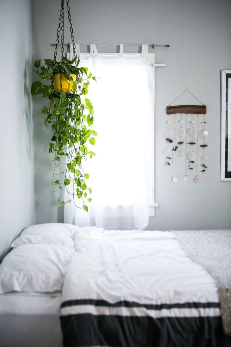 20+ Hanging plants in bedroom ideas   LivingRoomReference