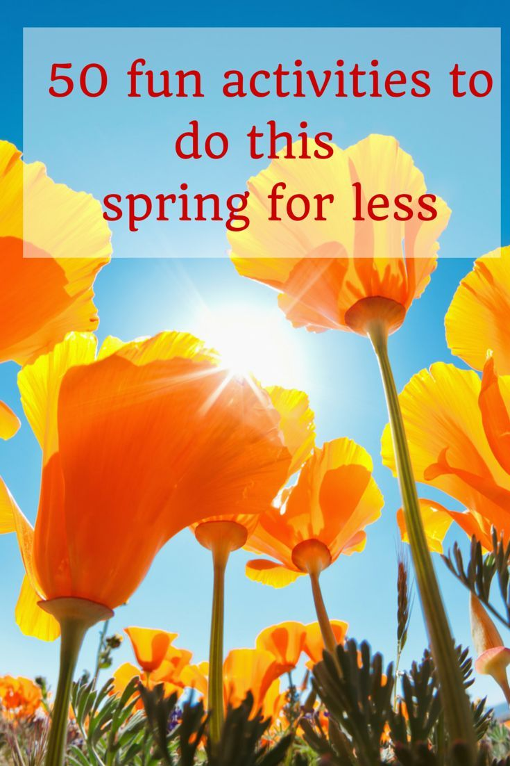 Looking for some fun activities to do this spring with your family? Here are 50 ideas that you can do this spring for not much money.