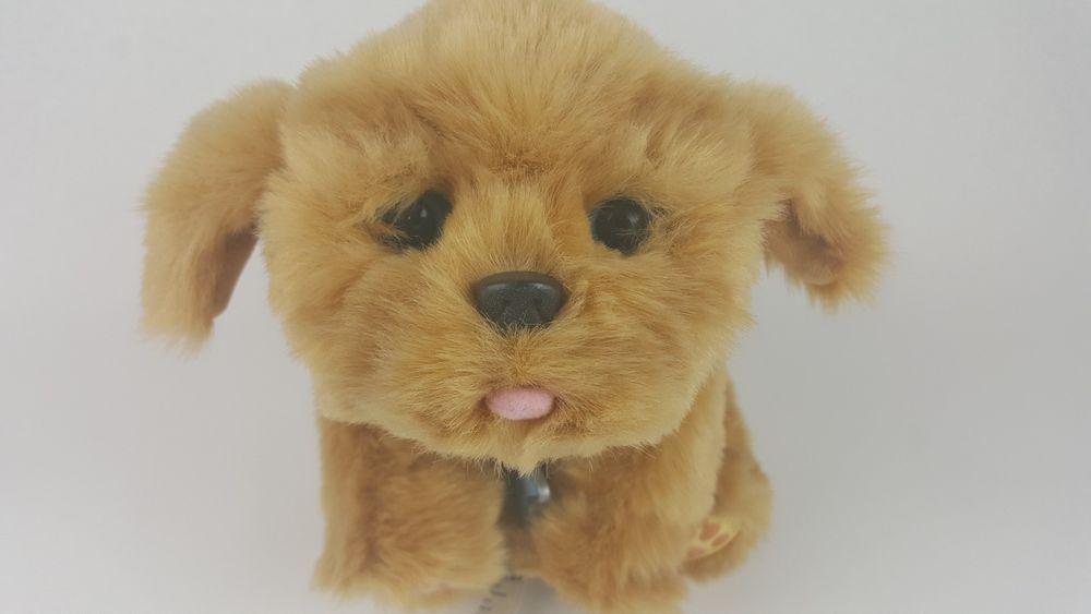 Little Live Pets Snuggles My Dream Puppy Interactive Pet Dog Plush