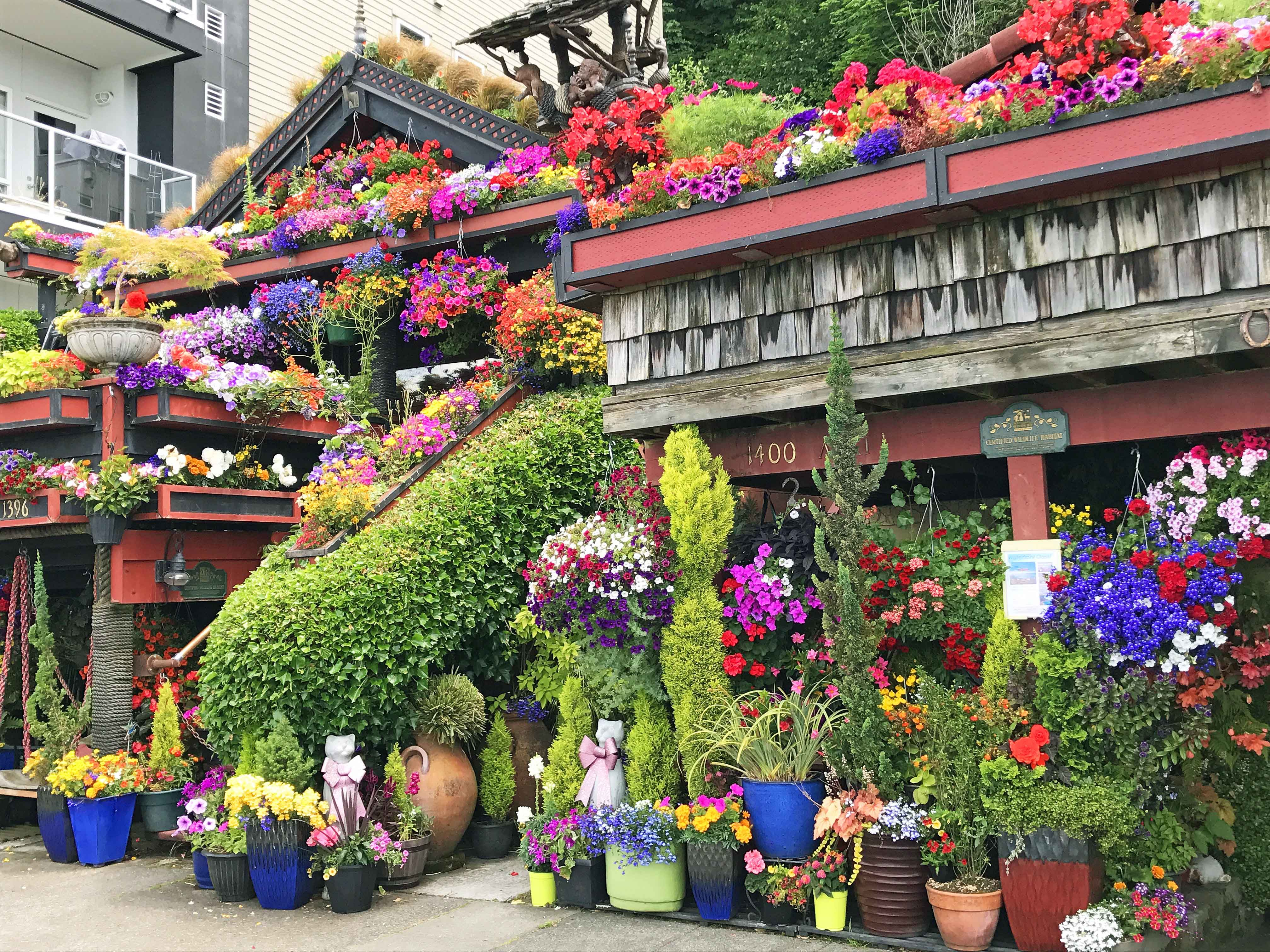 Famous Flower Home At Alki Beach Best Places To Eat And See In Seattle