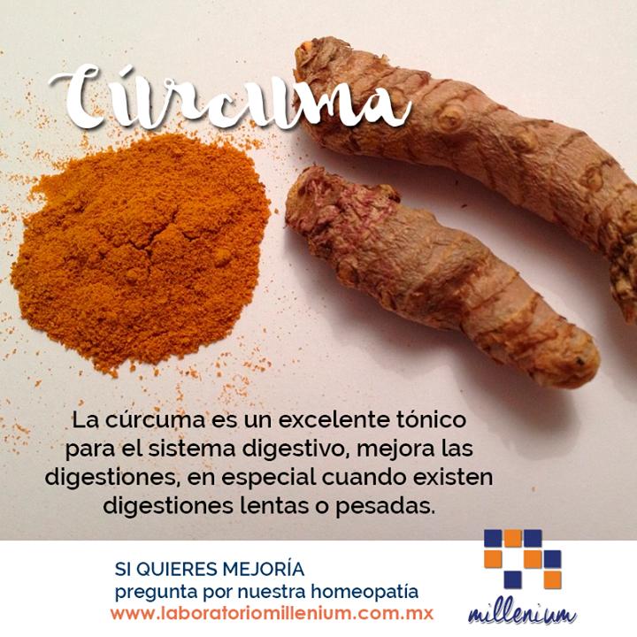 Prepara platillos que lo lleven como ingrediente y verás mejorada tu digestión.