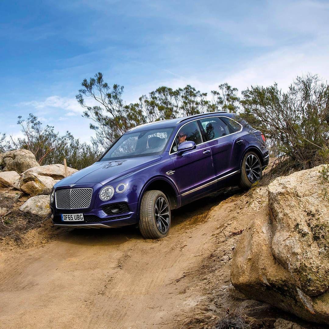 Cars, Bentley Suv, Luxury Cars