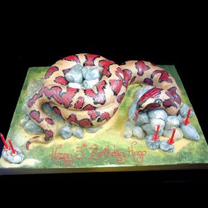 Snake cake...cool idea...how to replicate?