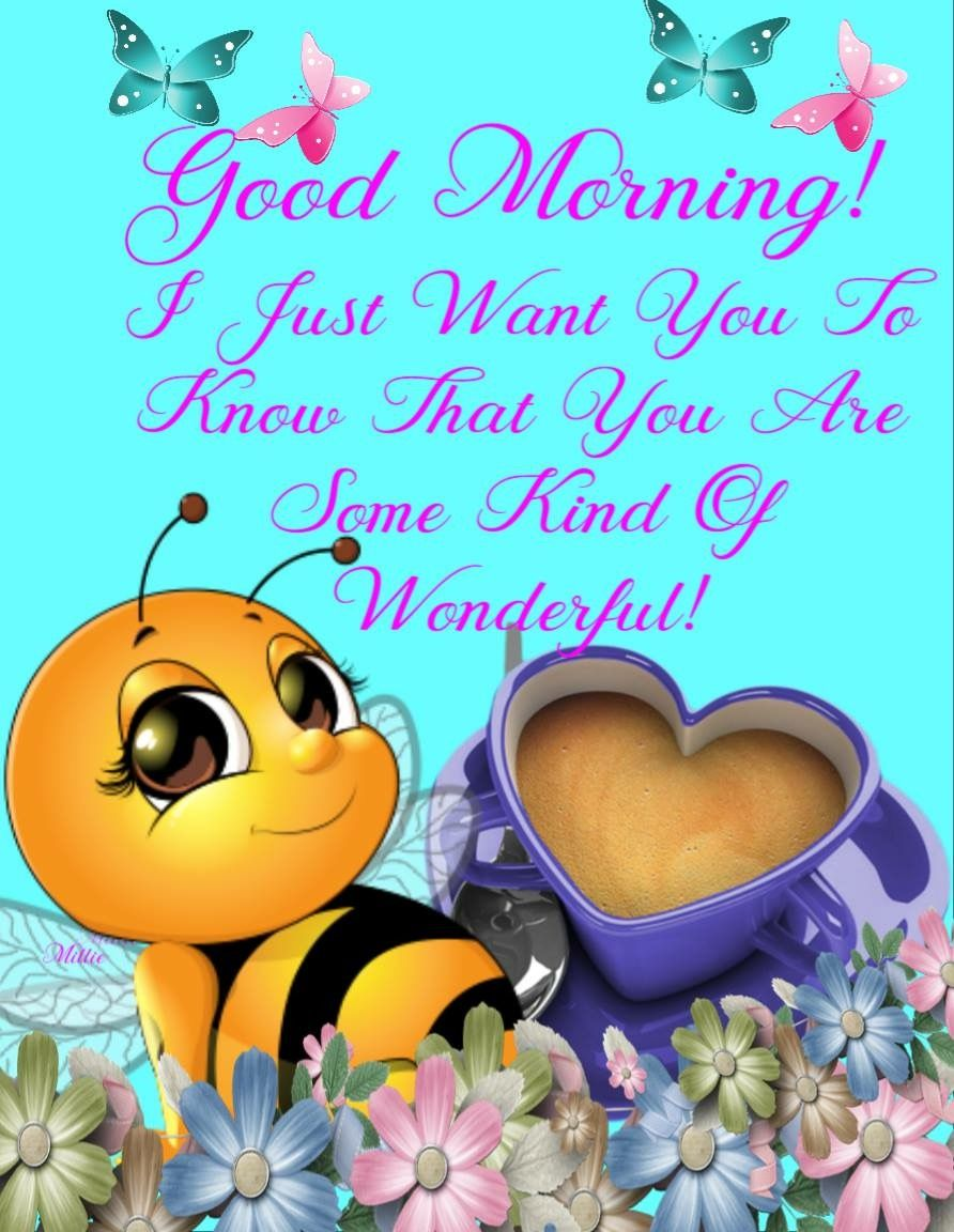 Definately You Are Incredibly Amazing Have A Nice Day Cute Good Morning Quotes Morning Quotes Funny Good Morning My Friend