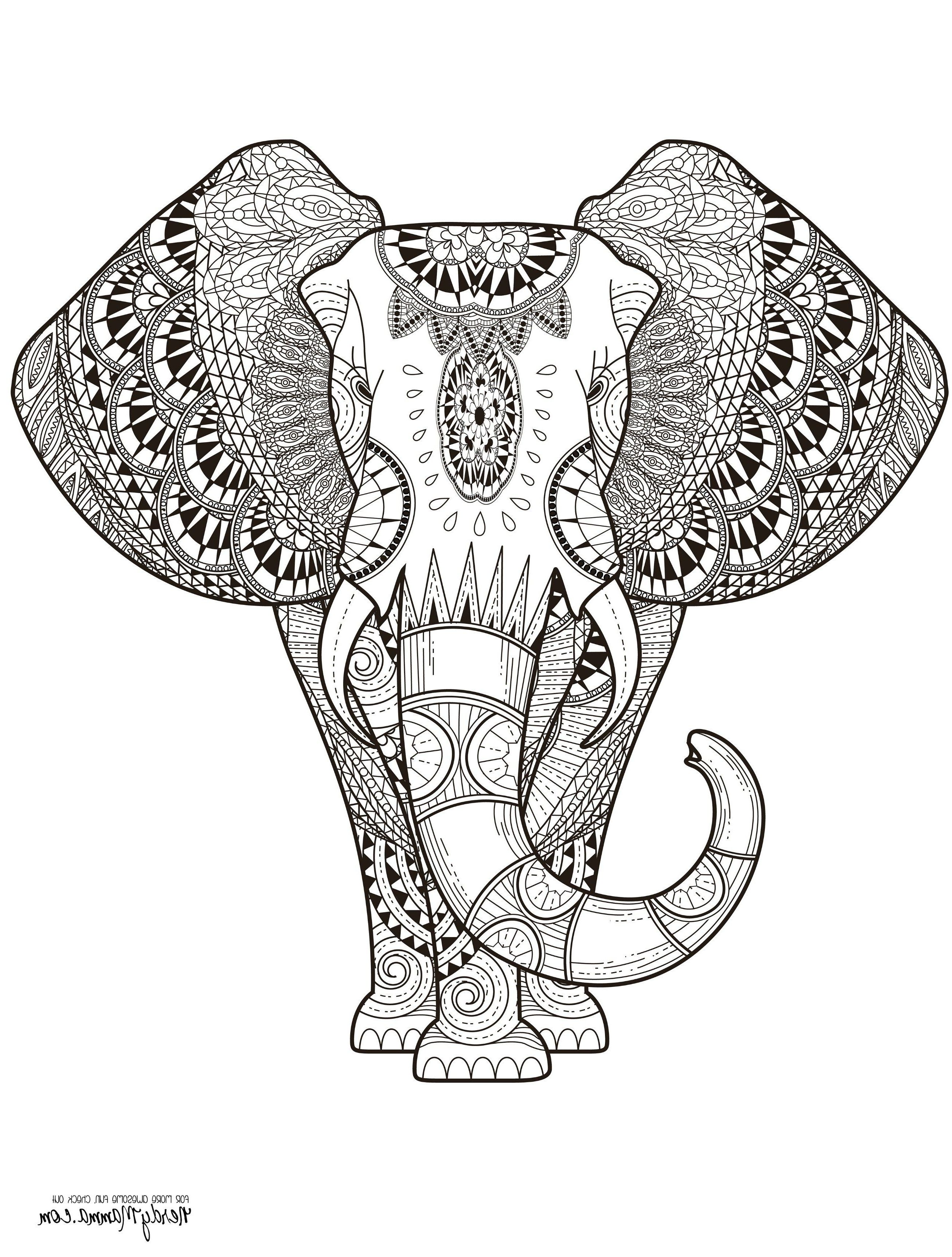 Elephant Adult Coloring Pages Iby7 Elephant Abstract Doodle