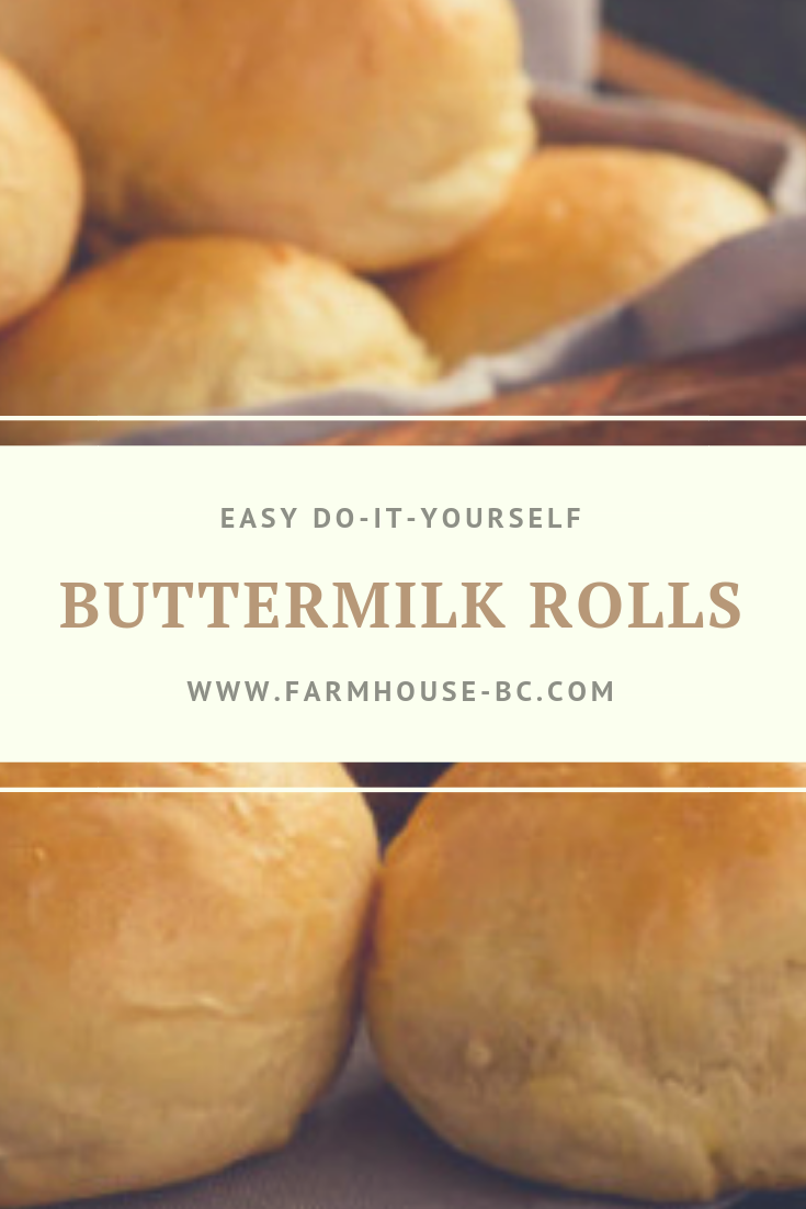Easy Buttermilk Wheat Bread Machine Rolls Farmhouse Basic Collection Recipe Bread Machine Rolls Buttermilk Recipes Bread Machine Wheat Bread Recipe