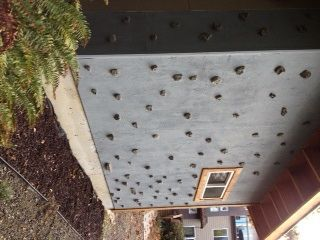 how to build a climbing wall metolius