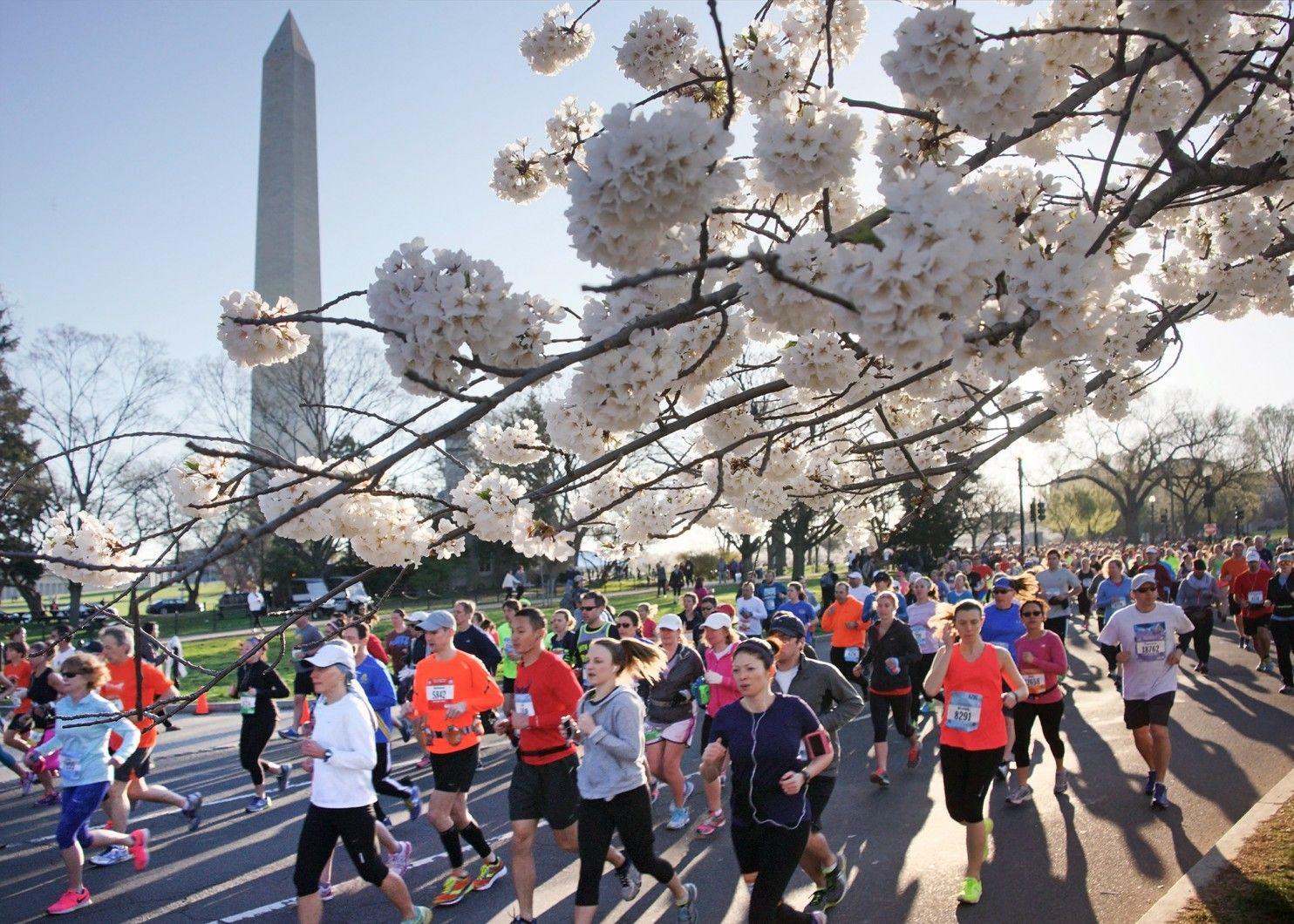 Cherry Blossom Ten Mile Run - Washington, DC - 4/7/2019 ...