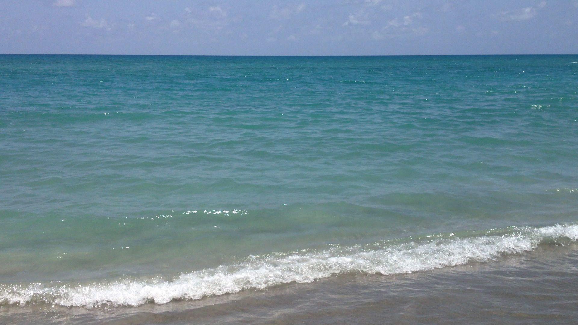 Al mare Florida