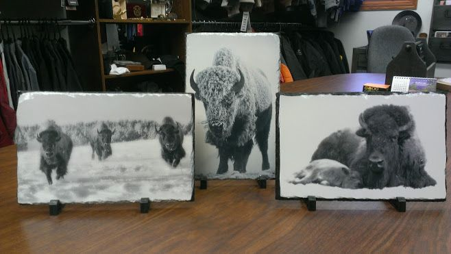 Some fantastic photo slates we just completed for the Museum of American Bison in Rapid City, SD.