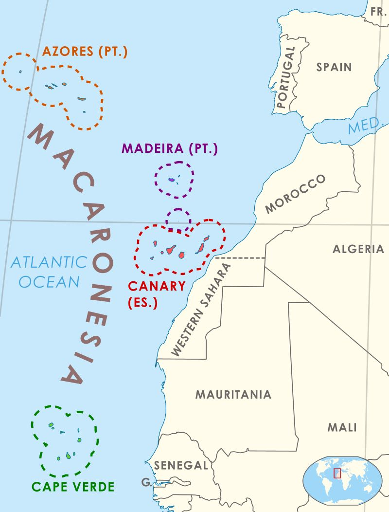 Macaronesia is a collection of four archipelagos in the North