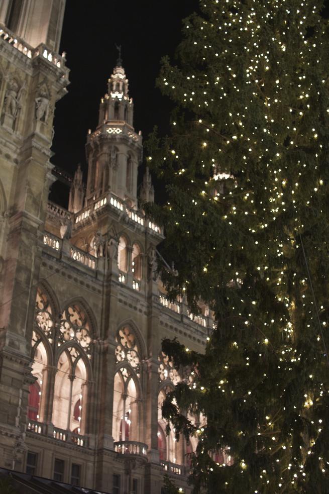 Vienna in November