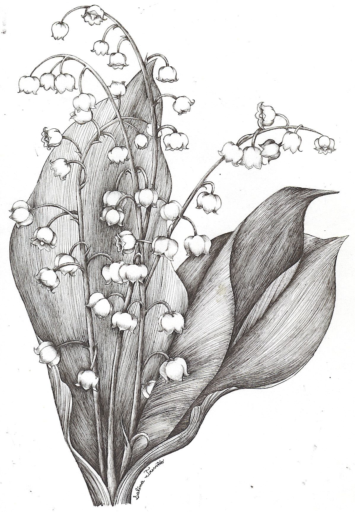 Lily Of The Valley By Moonie Dreamer Tattoos Pinterest Lily Of