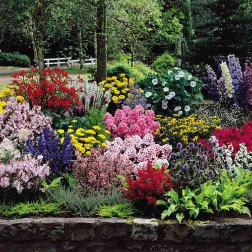 The Complete Cottage Garden Collection It Includes All Plans Flowers