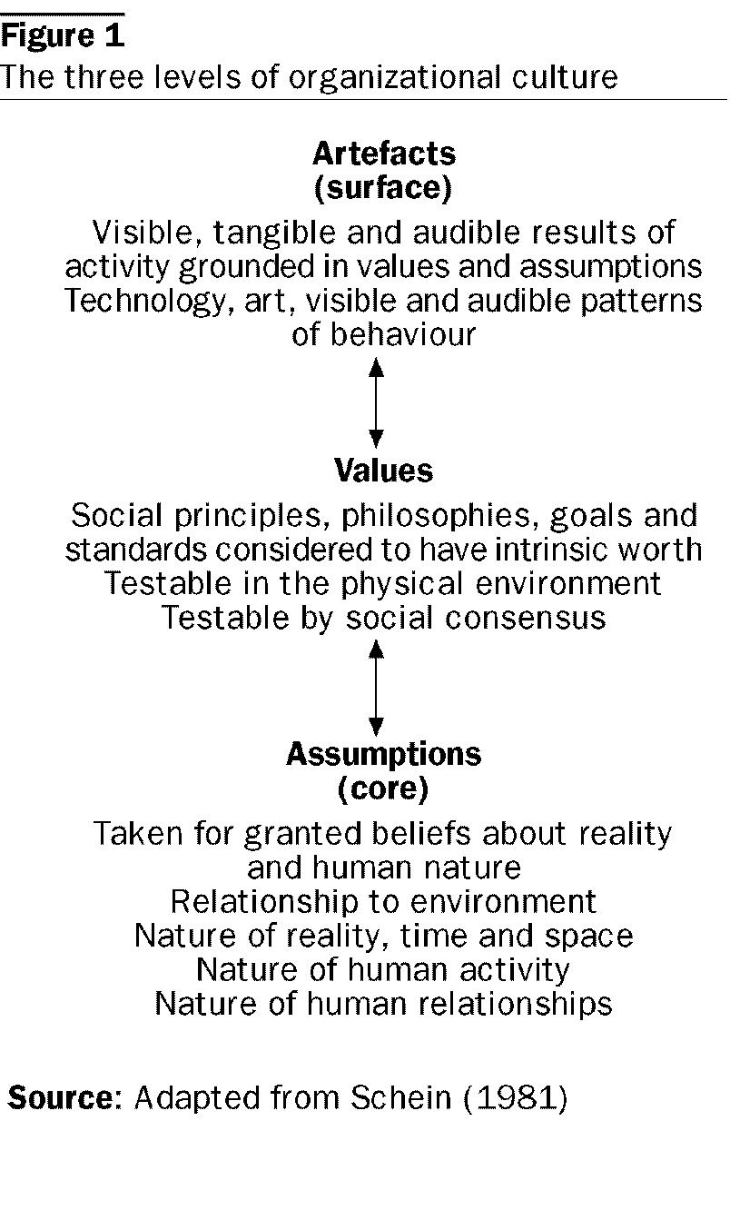 Levels of organizational culture schein eppp pinterest levels of organizational culture schein biocorpaavc