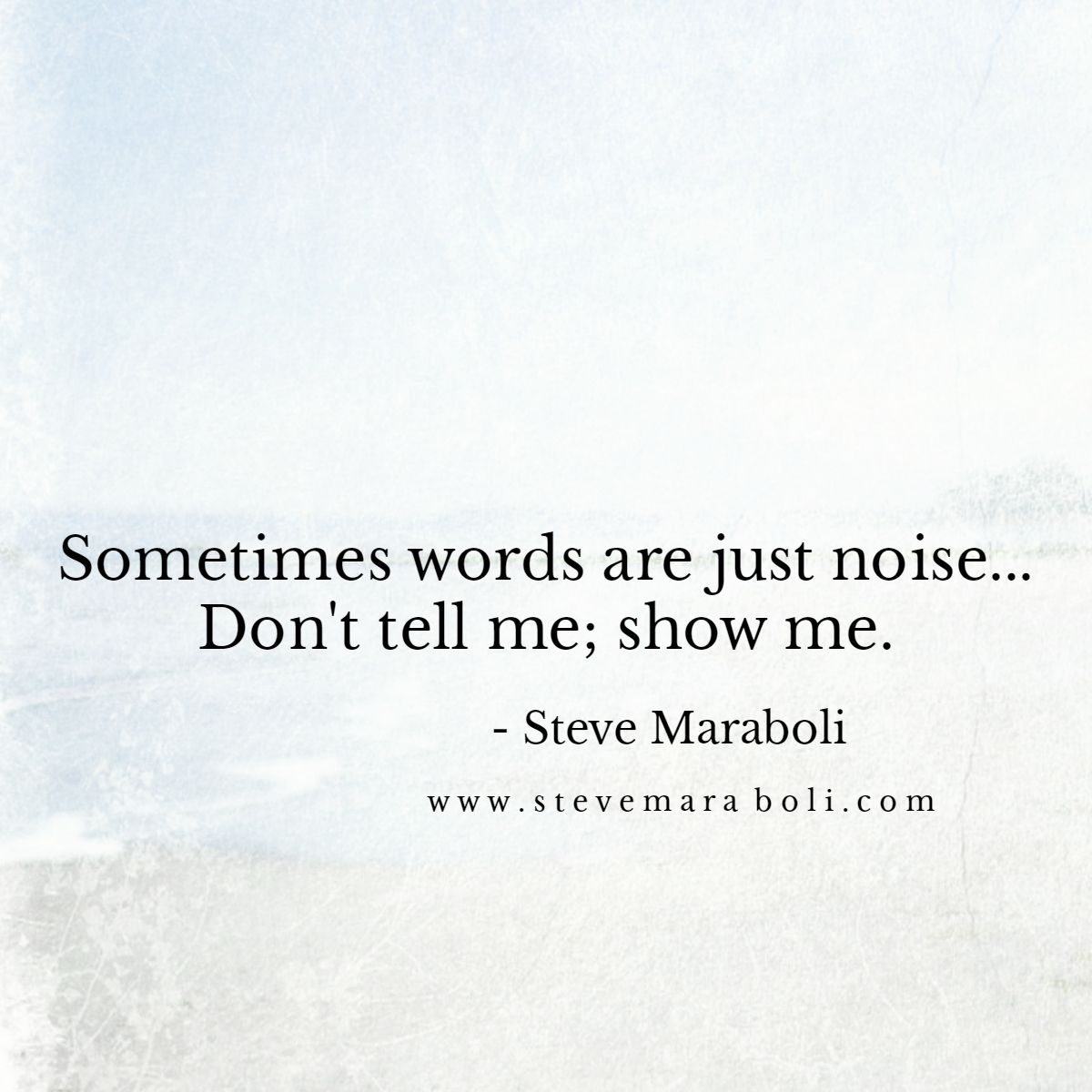 Sometimes Words Are Just Noise Don T Tell Me Show Me Steve