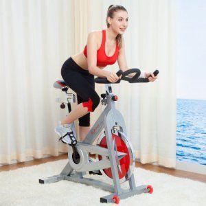 Best Spin Bike Reviews Under 500 Dollars Biking Workout Exercise Bike Reviews Indoor Cycling Bike