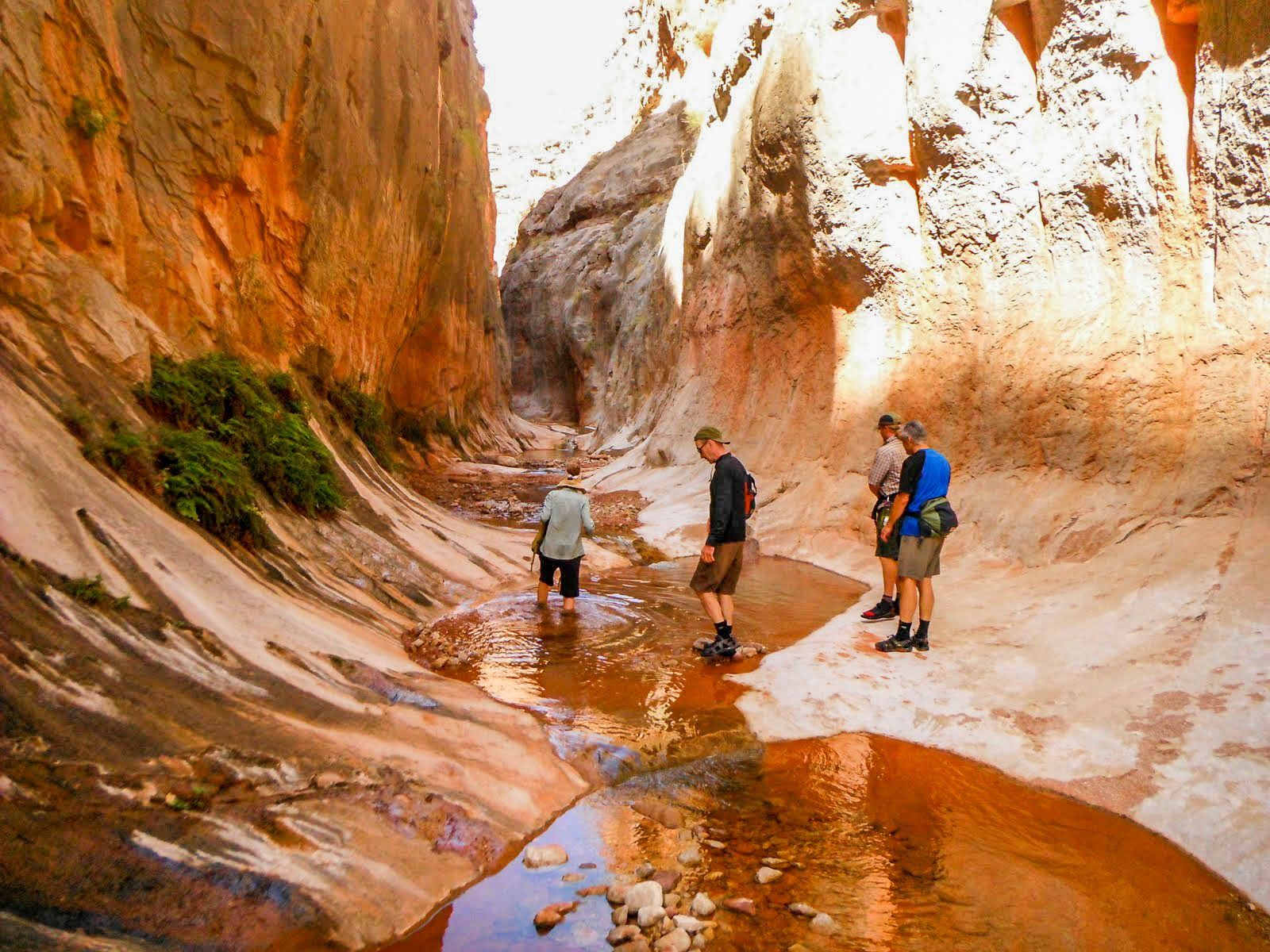 Hiking Up Kanab Creek In Utah With Four Season Guides Out