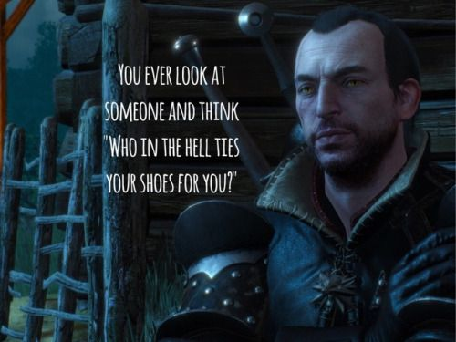 A Slight Case Of Sass The Witcher The Witcher Game The Witcher Wild Hunt