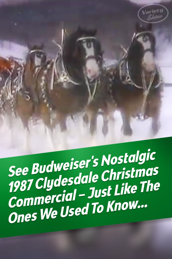 Will There Be A Budweiser Christmas Commercial 2020 Budweiser's Vintage 1987 Clydesdale Christmas Commercial