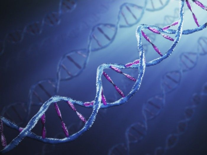 Scientists Finally Show How Your Thoughts Can Cause Specific Molecular Changes To Your Genes