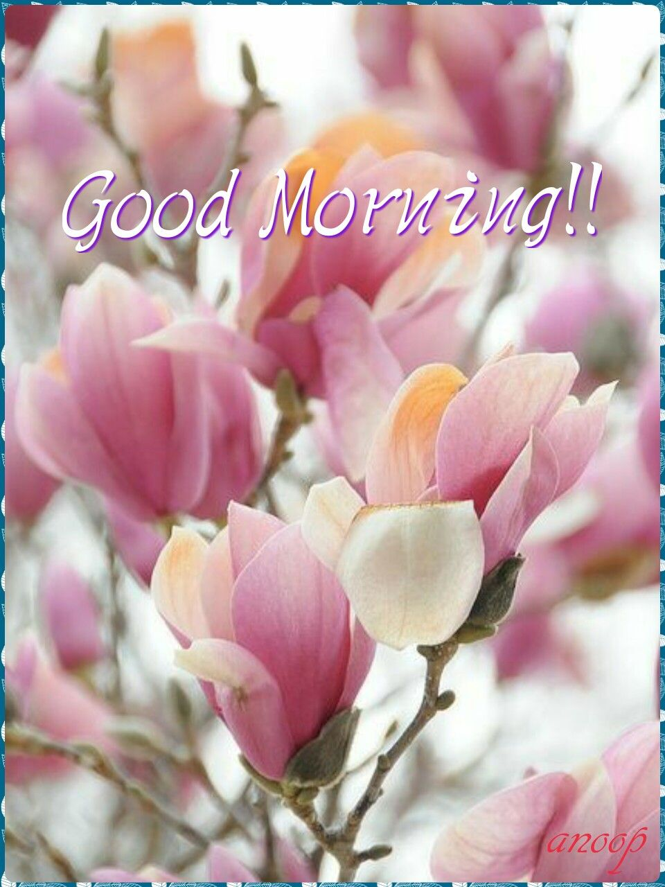 Good Morning Sweetheart I Hope You Had A Good Night I Am Going To
