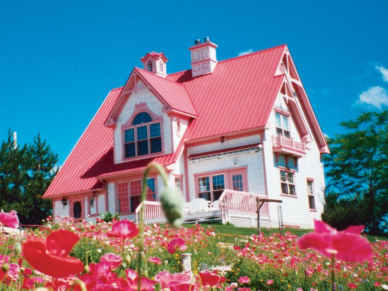 Way Cute Cottage Made Especially For The Pink Lover