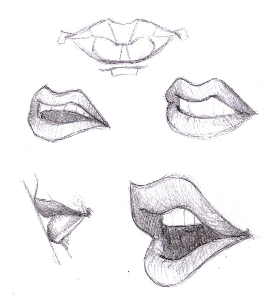 Drawing How To Draw Anime Lips Female With How To Draw Anime Nose In Conjunction With Drawing Of Anime Lips Anim Dibujos De Labios Esbozos Ejercicios De Dibujo